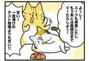 【12話】面接対策