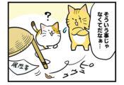 【24話】猫材とは