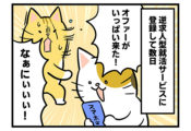 【26話】オファーきた!