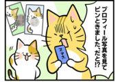 【27話】ピンときた!